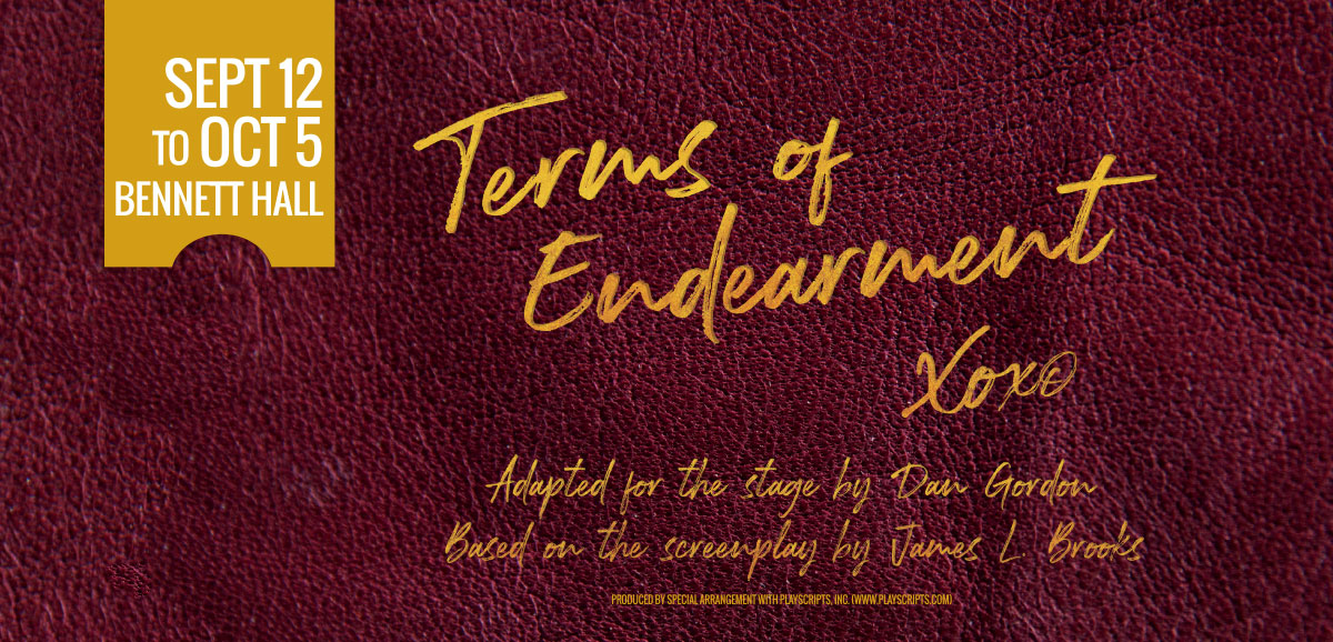 Terms of Endearment image